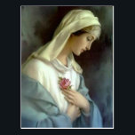 "Catholic Blessed Virgin Mary with Rose Postcard<br><div class=""desc"">This is a beautiful vintage traditional Catholic image of the  Blessed Virgin Mary holding a pink rose. Lovely pink roses are on the back.</div>"