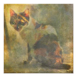"""Cathy calico cat square card 5.25"""" square invitation card"""
