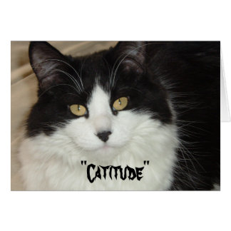 Catitude Cat with an Attitude Card
