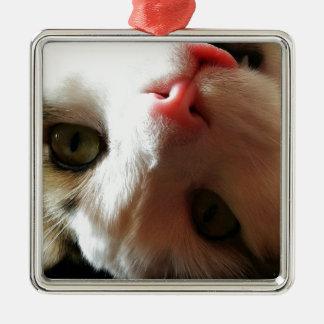 Catitude Metal Ornament