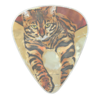 CATITUDE PEARL CELLULOID GUITAR PICK