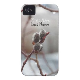 Catkin cubierto de rocio; Personalizable iPhone 4 Case-Mate Protectores
