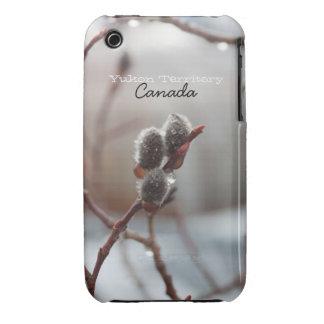 Catkin cubierto de rocio; Recuerdo del territorio Funda Bareyly There Para iPhone 3 De Case-Mate