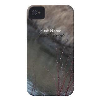 Catkins de CATC en The Creek iPhone 4 Carcasa