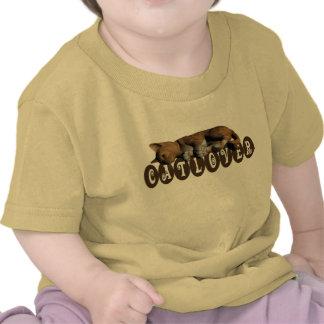 Catlover Tee Shirt