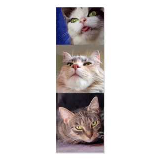 Catlovers' Bookmark Double-Sided Mini Business Cards (Pack Of 20)