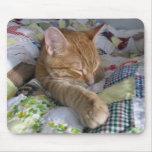 Catnap cómodo Mousepad del edredón Alfombrillas De Raton