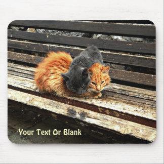 Catnap Cuties Mouse Pad