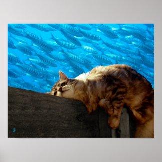 Catnap Fishing print