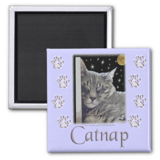 Catnap Gray Tabby Cat Magnet