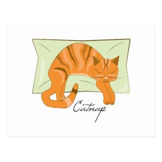 Catnap Postal