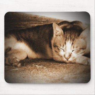 Catnapping Mouse Pad