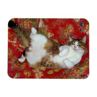 """""""Catnip Bliss"""" Photomagnet Rectangular Photo Magnet"""