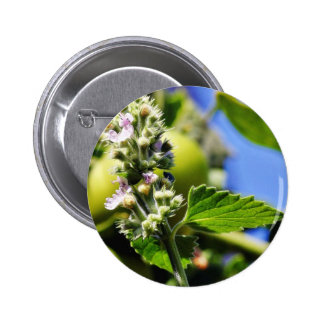 Catnip Leaves Flowers Pinback Button