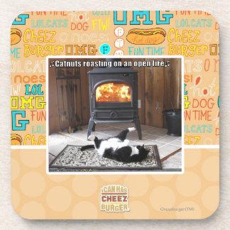 Catnuts roasting coaster