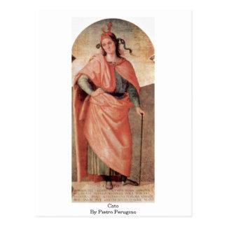 Cato By Pietro Perugino Postcard