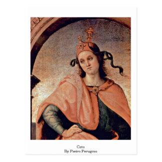 Cato By Pietro Perugino Post Card