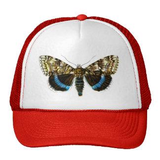 Catocala fraxini trucker hat