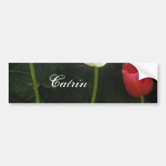 Catrin Car Bumper Sticker