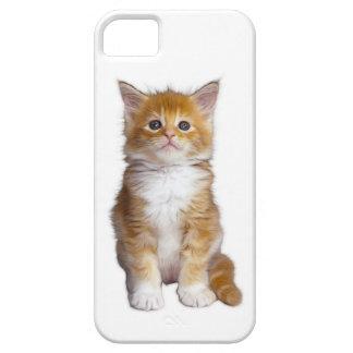 CATS5 iPhone SE/5/5s CASE