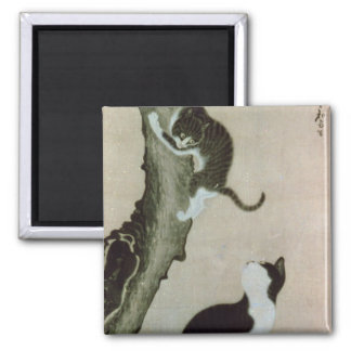 Cats, 17th century (ink on silk) 2 inch square magnet