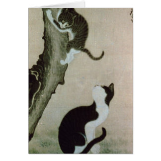 Cats, 17th century (ink on silk) card