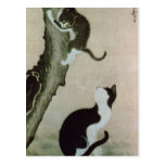 Cats, 17th century (ink on silk) postcard