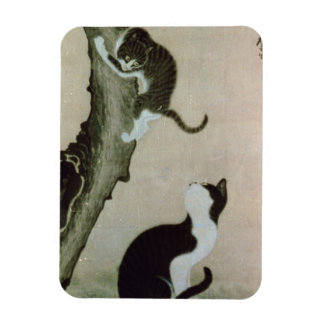Cats, 17th century (ink on silk) rectangular photo magnet