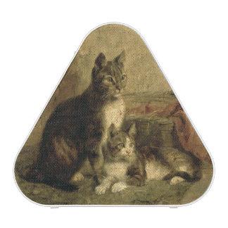 Cats, 1883 speaker