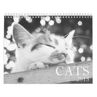 Cats 2013 Calendar