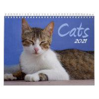 Cats 2021 Photo Calendar