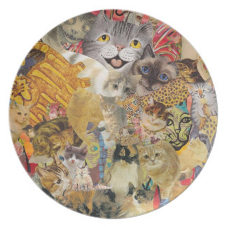 Cats a Plenty Plate