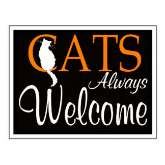 Cats always welcome sign postcard