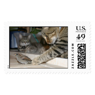 Cats and a Bird Postage