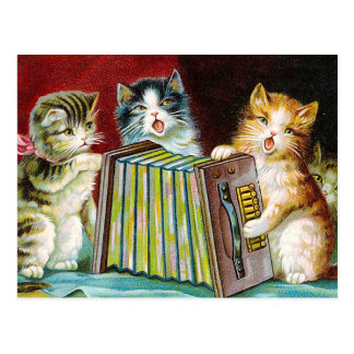 """Cats and a Squeezebox"" Postcard"