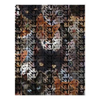Cats and Cats and Letterhead
