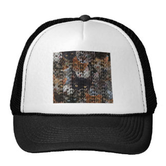 Cats and Cats and Trucker Hat