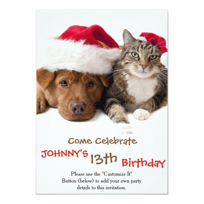 Cats And Dogs Christmas Cat Christmas Dog Invitation Zazzle Com