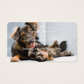 Cats and dogs - funny dog - Funny cats Business Card