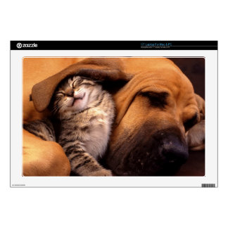 """Cats and Dogs 17"""" Laptop Decal"""