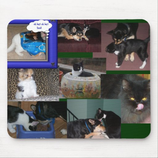 Cats and Dogs Together mousepad