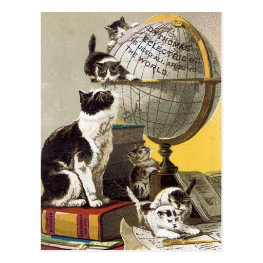 Cats and  Globe Post Card