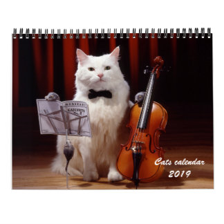 Cats and kitten calendar 2019