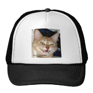 CATS AND MORE CATS TRUCKER HAT