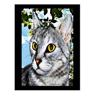 "Cats and Nature ""In Full Bloom"" Digital Art Postcard"