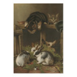 Cats and Rabbits Large Business Cards (Pack Of 100)
