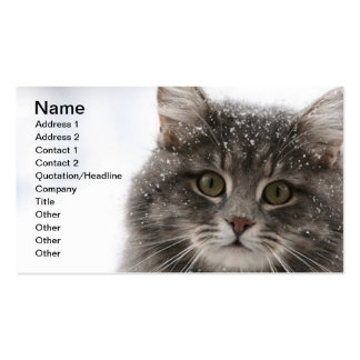 cats_and_snow15 snowfall pets animals furry cat Double-Sided standard business cards (Pack of 100)