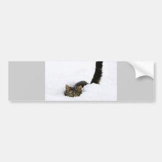 cats_and_snow_ (4) car bumper sticker