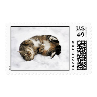 cats_and_snow_ (5) cute pets animals kittens funny postage stamp