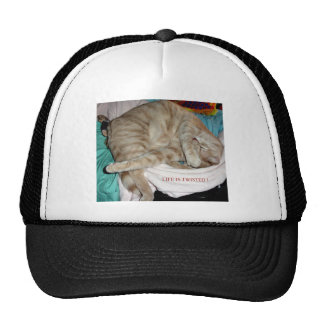 CATS AND TIGERS TRUCKER HAT